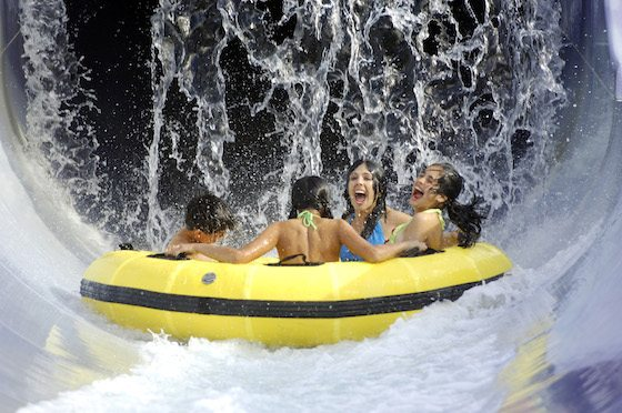 Adventure island opens march 8 pay for a day visit all - Busch gardens and adventure island ...