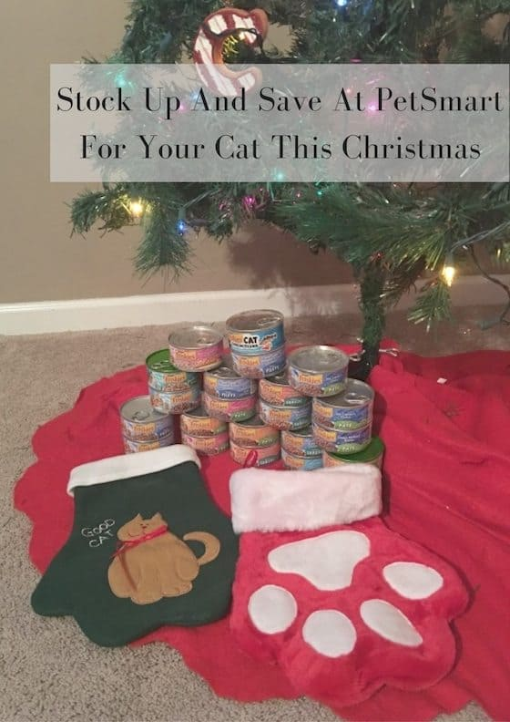 Petsmart Christmas Hours.Stock Up And Save At Petsmart For Your Cat This Christmas