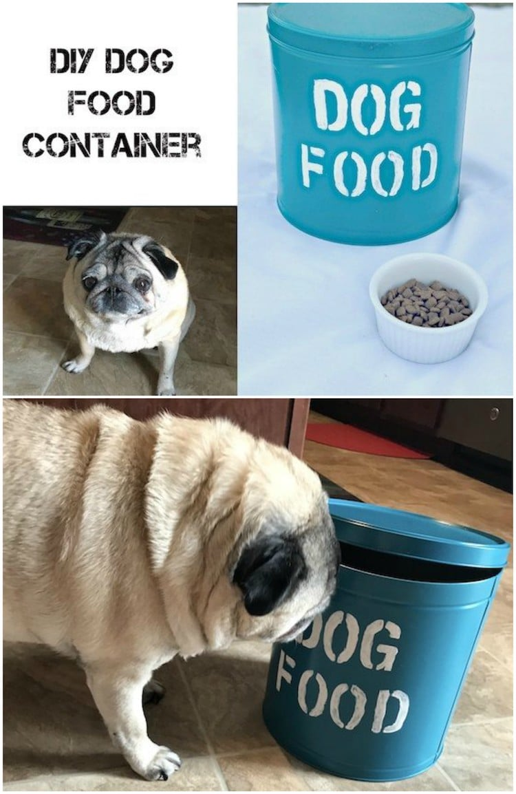 Do you have an old popcorn tin at home? You can make your dog this easy DIY pet food container. It keeps the dogs food fresh!