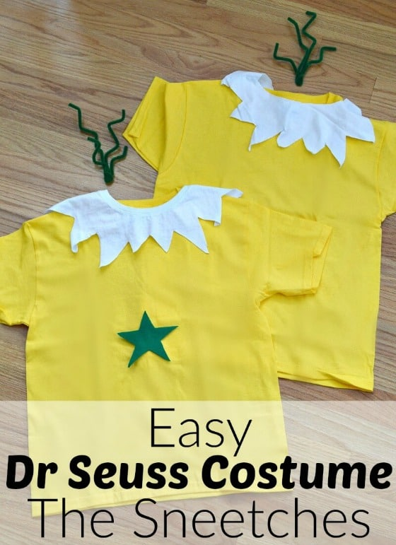 3 Easy Diy Storage Ideas For Small Kitchen: 10 Easy And Fun DIY Halloween Costumes