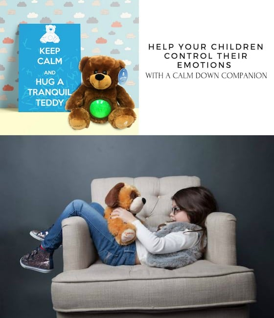 Help Your Children Control Their Emotions With A Calm Down Companion
