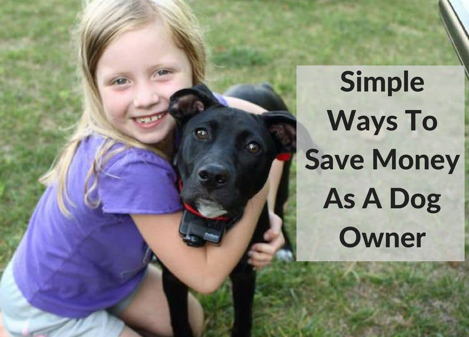 Simple Ways To Save Money As A Dog Owner