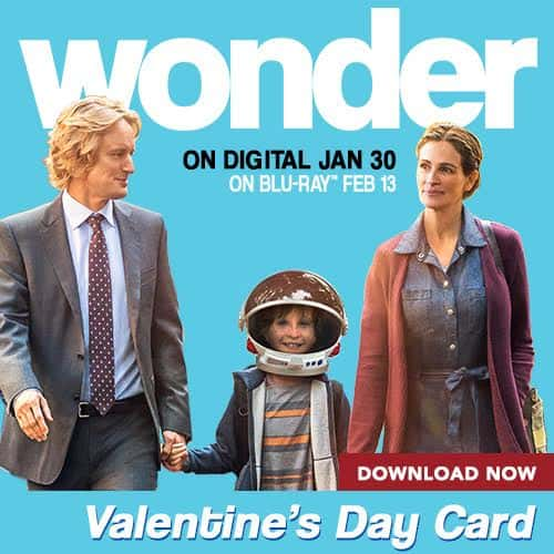 FREE Printable WONDER Valentines Day Cards