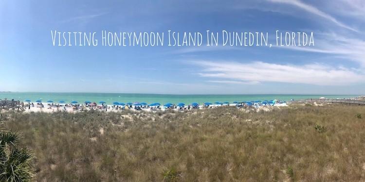 Visiting Honeymoon Island In Dunedin Florida