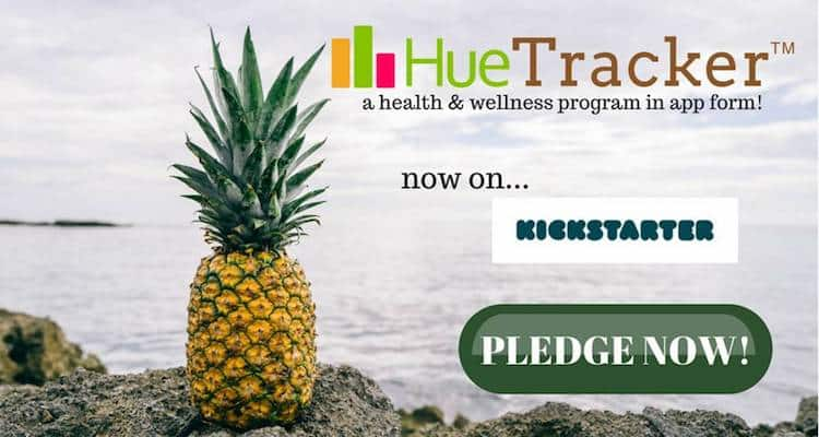 HueTracker Kickstarter