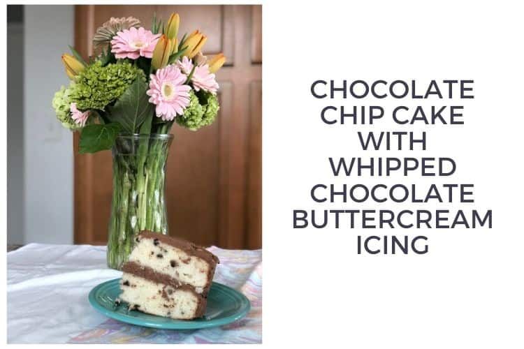 Chocolate Chip Cake With Whipped Chocolate Buttercream Icing