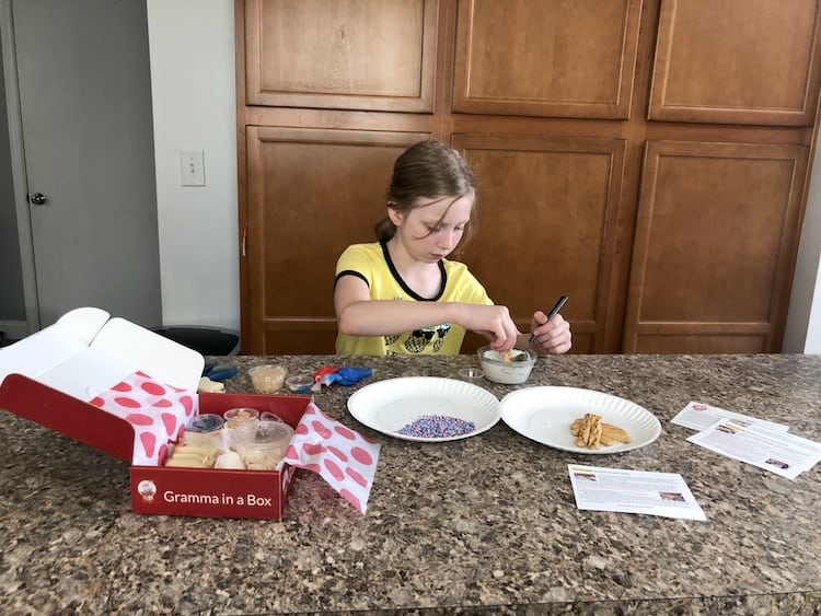 cookie decorating subscription box